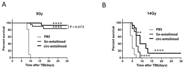 Protection of mice from lethal irradiation by circ-entolimod compared to lin-entolimod.