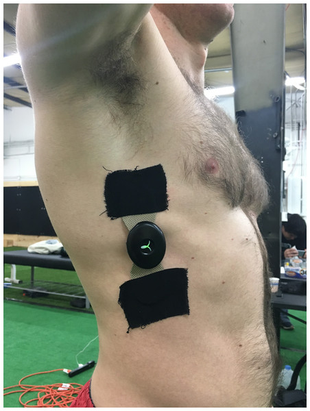 EMG application example.