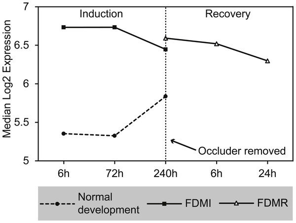 Median expression of core genes in the bile acid and bile salt metabolism pathway during FDM.