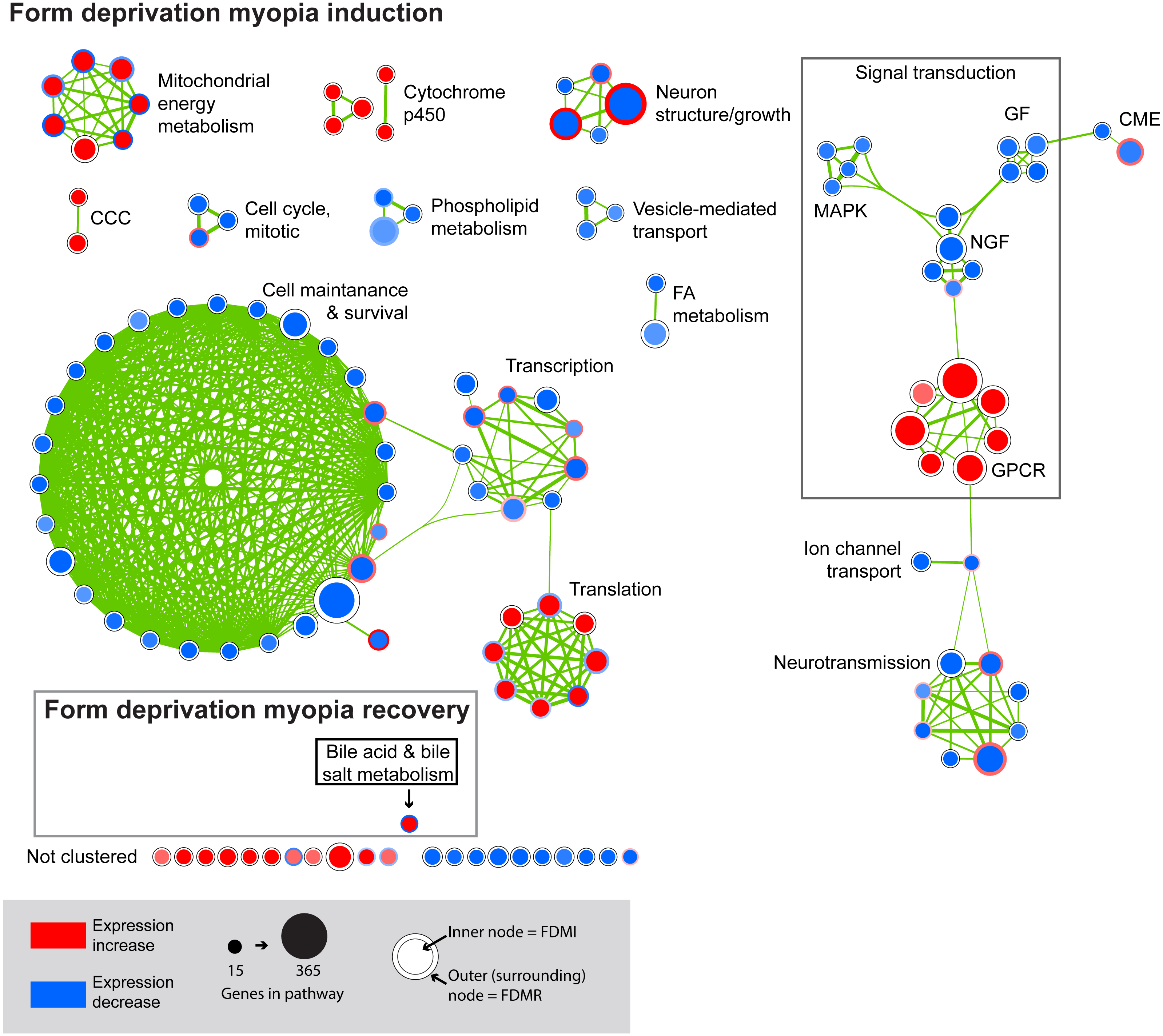 Pathway analysis identifies altered mitochondrial metabolism