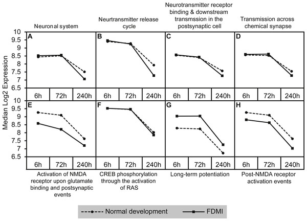 Median expression of pathways involved in neurotransmission during normal ocular development and in FDMI.