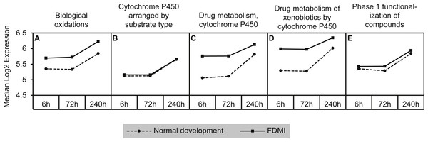 Median expression of pathways involved in cytochrome p450 metabolism.