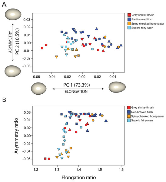 Comparison between 3D and 2D approach to quantify egg shape variation among four bird species.