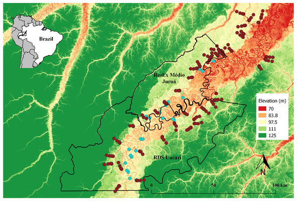 Map of the study area in the central Rio Juruá region of western Brazilian Amazonia, Amazonas, Brazil.