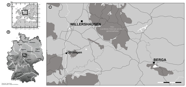 The location of Willershausen and Berga outcrops (Germany) from the late Pliocene.