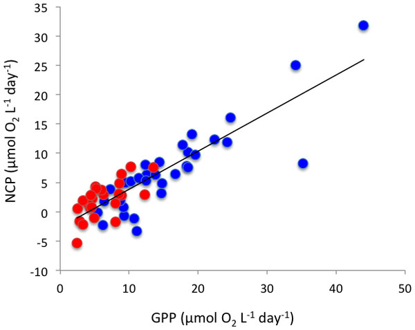 The relationship between net community production and gross primary production