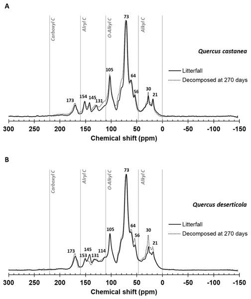13C CPMAS NMR spectrograms.