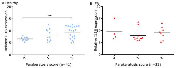 Comparison between IL-1βmRNA expression and parakeratosis score in ovine interdigital skin.