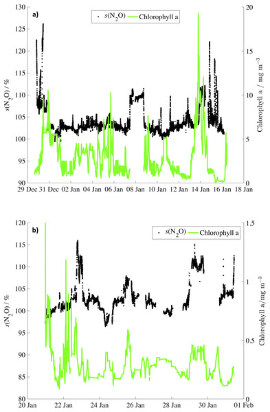 N2O saturations and chlorophyll concentrations for JR260B and JR255A/GENTOO.