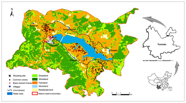 Habitat use and spatial distribution of black-necked and common cranes in the Huize National Nature Reserve, northeastern Yunnan, China.