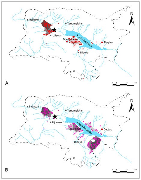 Utilization distributions of black-necked (A) and common cranes (B) in the Huize National Nature Reserve, northeastern Yunnan, China.