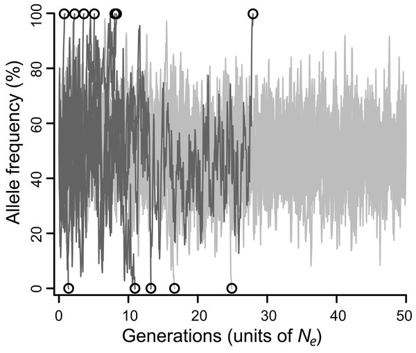 Allele frequencies across 100,000 generations (= 50 Ne) at a locus under balancing selection linked to another locus under balancing selection, without epistasis.