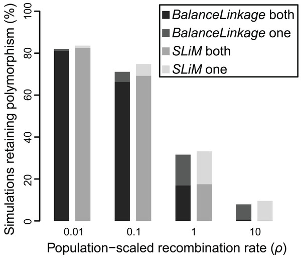 Proportion of simulations where polymorphism is retained after 50 Ne generations, under two independent methods, for Nes of 10 and recombination (ρ) ranging from 0.01 to 10.