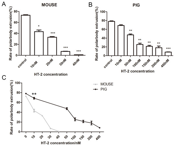 The effects of HT-2 on the oocyte maturation.