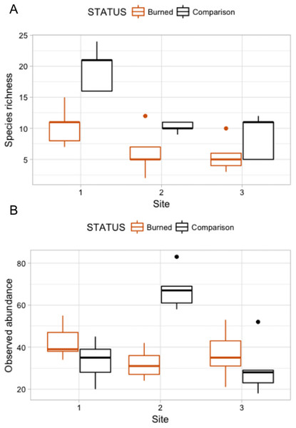 "Box plots comparing species richness and observed abundances across burned and comparison areas (""Status"") at three sites."