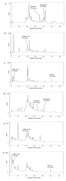 Absorption chromatogram of phenolic compounds in thyme honey using HPLC.