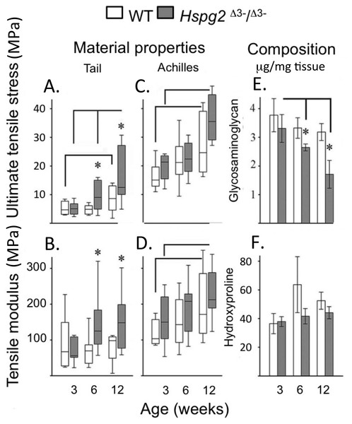 Material properties of wild type and perlecan exon 3 null mouse tail and Achiles tendons and compositions.