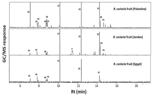 Representative SPME-GC-MS chromatogram of fresh R. coriaria fruit (sumac) collected from Egypt, Jordan and Palestine.