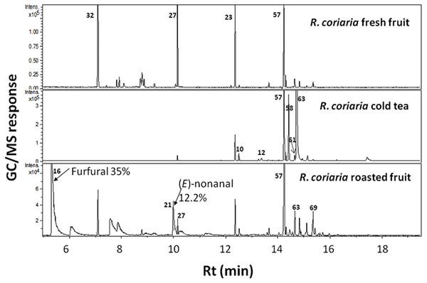 Representative SPME-GC-MS chromatogram of fresh, cold tea and roasted R. coriaria fruit (sumac) from Palestine.