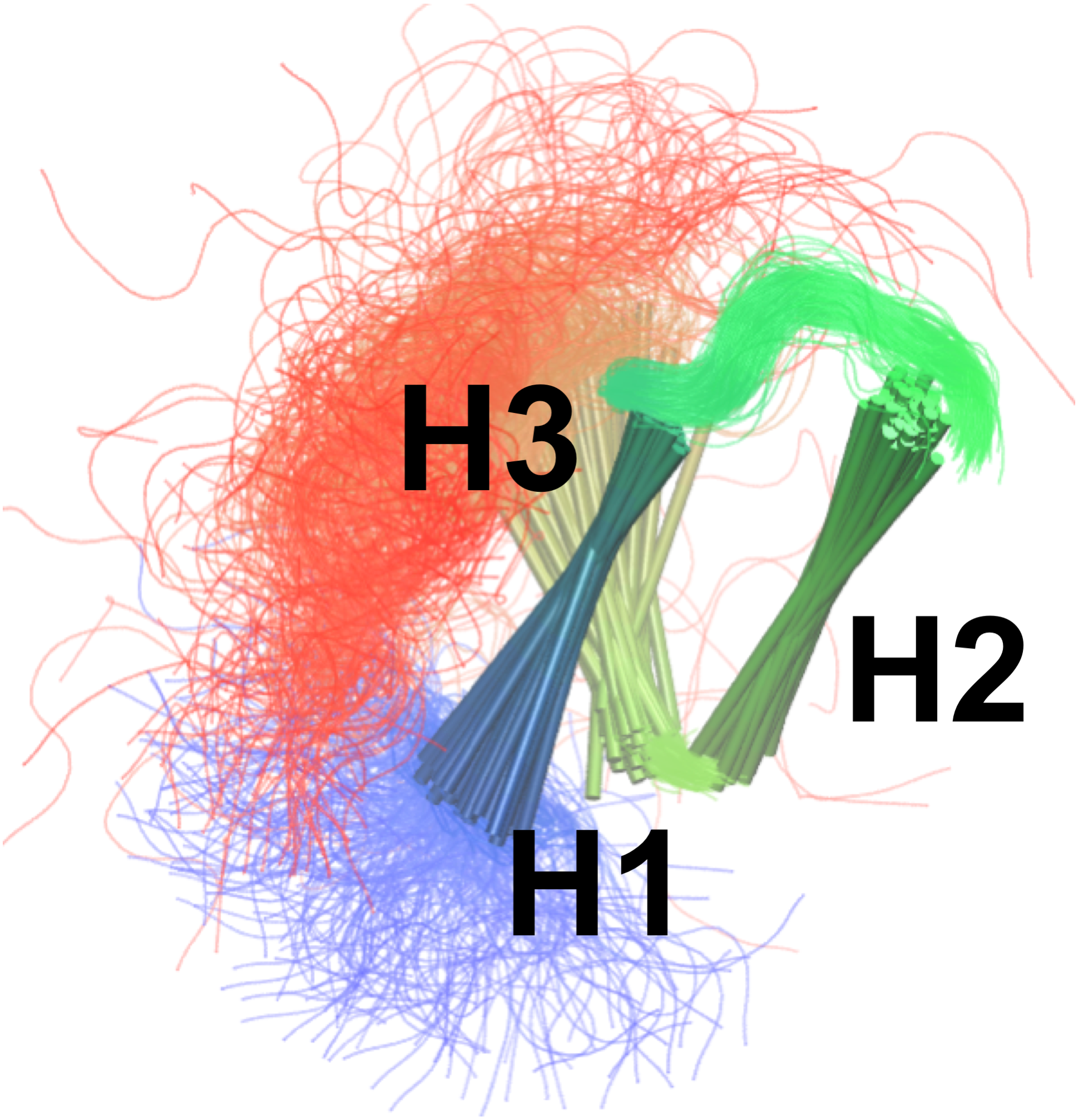Molecular dynamics ensemble refinement of the heterogeneous