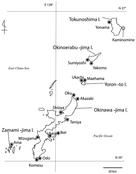 Map of Palythoa species specimen locations in the Ryukyu Archipelago in this study.