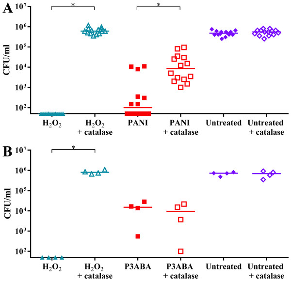 The effect of exogenous catalase on the sensitivity of E. coli 25922 to the antimicrobial action of PANI and P3ABA.