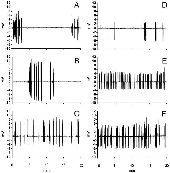 Example traces of ventilation in Trachemys scripta and Chelonoidis carbonarius.