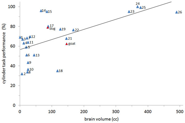 Relationship between brain size and motor self-regulation.