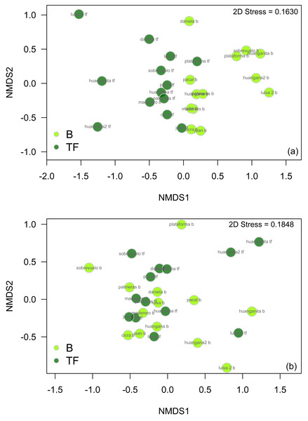 nMDS plots comparing beetle community structure between bamboo and terra firme forest in (A) the wet season only and (B) the dry season only.