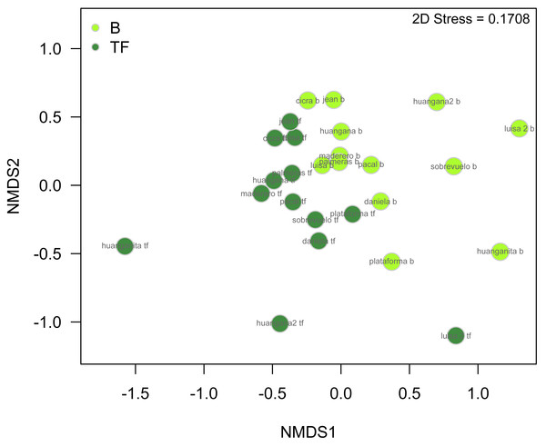 nMDS plot illustrating beetle community structure between bamboo and terra firme forest with data from all families and seasons pooled.