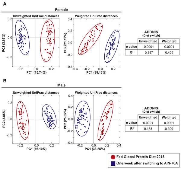 Dietary switch results in a shift of the fecal microbiota composition.
