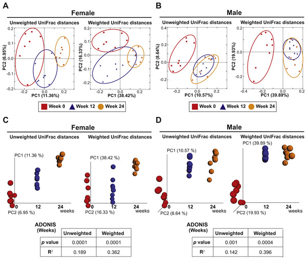 Aging is an independent driver of microbial assemblage, particularly in female mice.