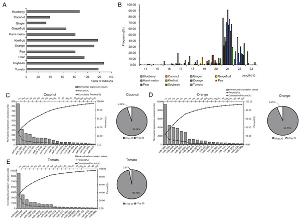 Identification and expression profiles of EPDELN-related miRNAs.