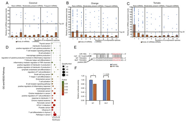 Distribution, classification, and functional analysis of miRNAs with high expression in EPDELNs.