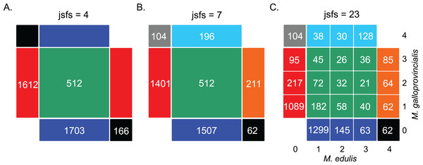 Decomposition of the unfolded joint site frequency spectrum for n = 2 individuals (i.e., four alleles) in each species.