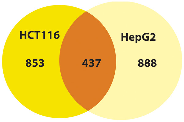 MP-HX treatment induced differential expression of genes inHCT116 and HepG2 cells.