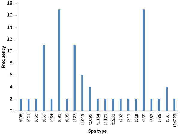 Frequency of spa types in 47 S. aureus isolates.