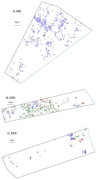 Fine scale distribution of C. aspera (2x), C. seridis (4x), and C. x subdecurrens (3x) in the three studied sampling plots.