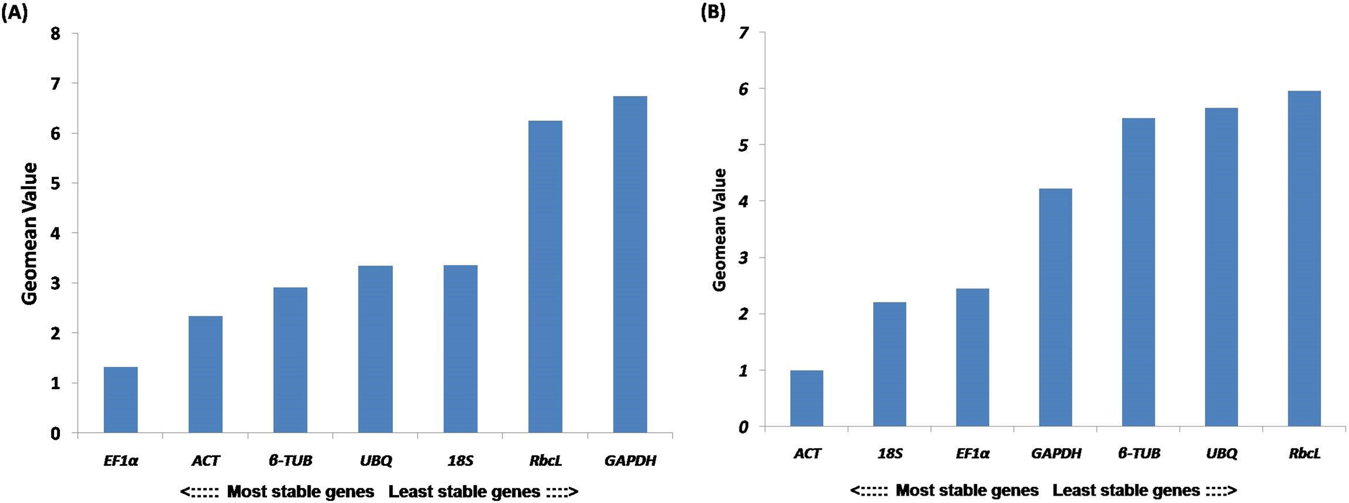 Selection of reference genes for quantitative real-time PCR analysis ...