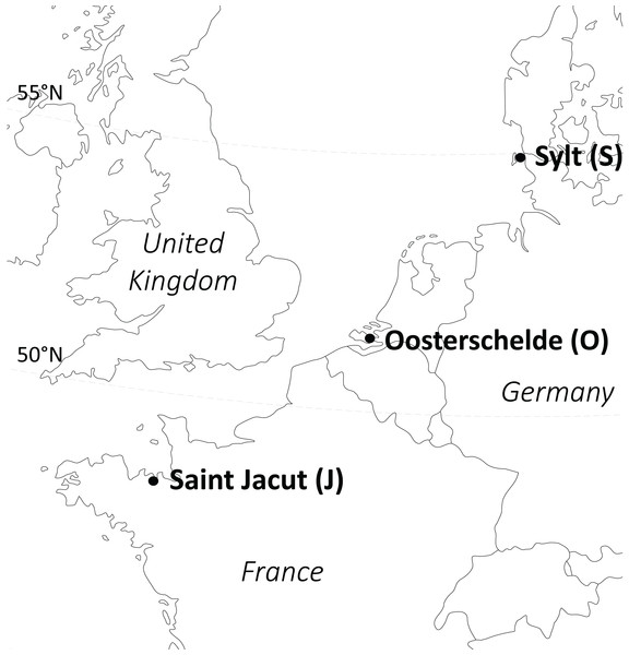 Origin of the Zostera noltii plants used in the experiments (experiment 1: only Oosterschelde, experiment 2: all three populations).