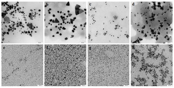 TEM of Au and Ag nanoparticles.