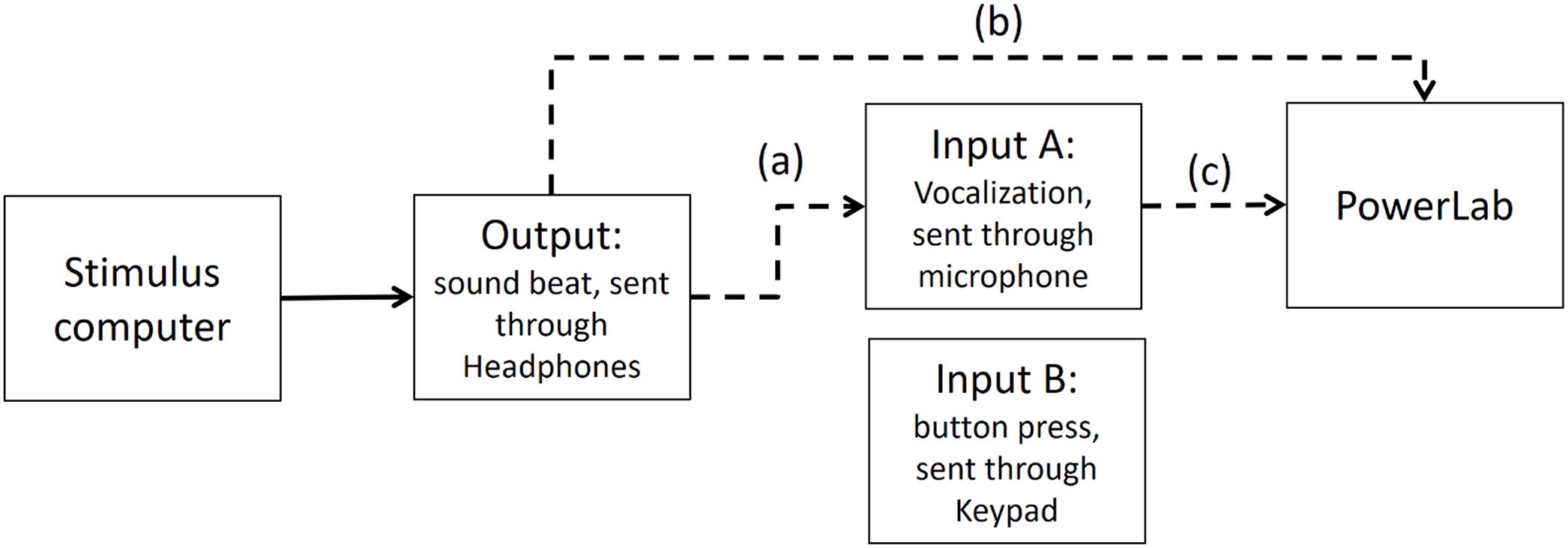 Stop Signals Delay Synchrony More For Finger Tapping Than Acts As An Output Of The Circuit Click To View Fullsize Picture Download Full Size Image