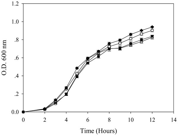 Growth patterns of E. coli grown in the presence of 0.2 mM cadmium ions.