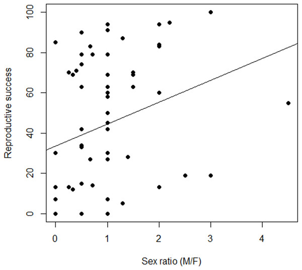 Variation in the relationship between reproductive success and sex ratio, males to females (M/F), in Z. portoricensis.