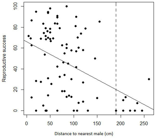 Relationship between female reproductive success and distance to the nearest male in Z. portoricensis.