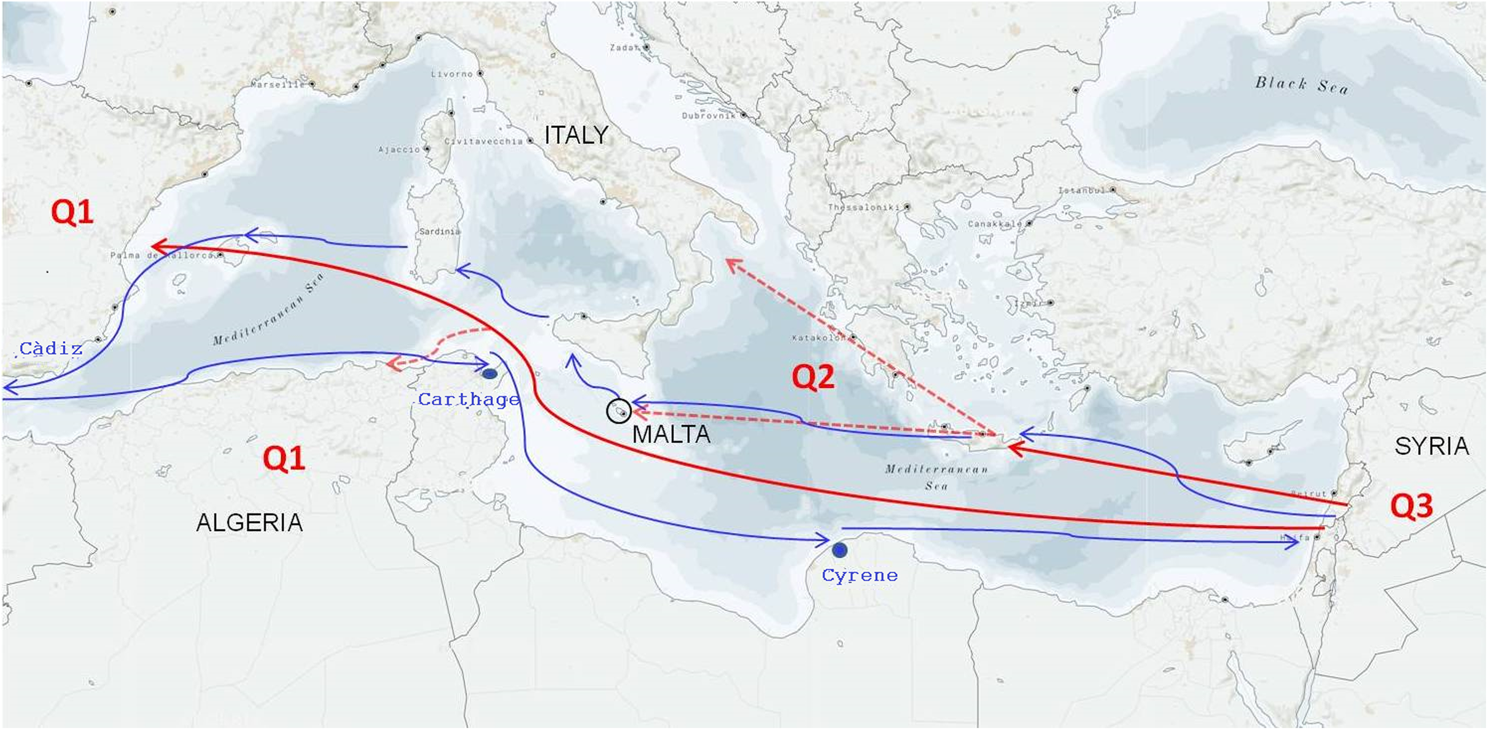 Genetic flow among olive populations within the Mediterranean basin