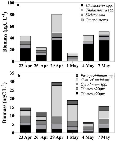 Carbon biomass of dominant taxa.