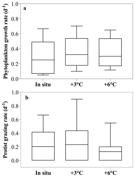 Temperature dependence of phytoplankton growth and herbivorous grazing rates.