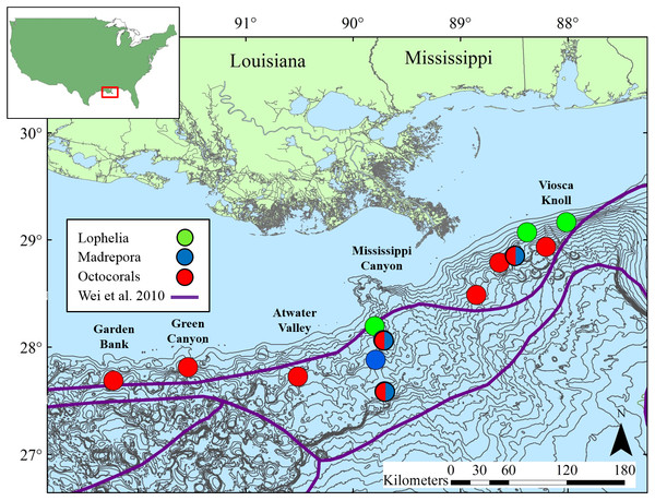 Map of study locations in the northern Gulf of Mexico, with soft-sediment deep-sea infaunal community zonation from Wei et al. (2010).