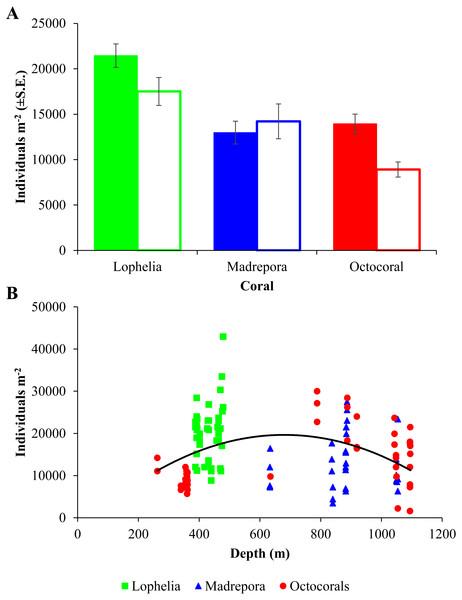 Macrofaunal density at deep-sea coral habitats.